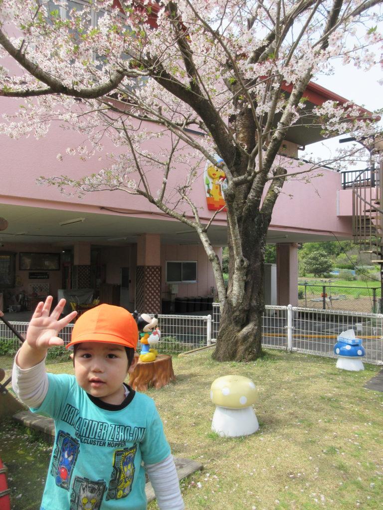 園舎の桜の木の下で